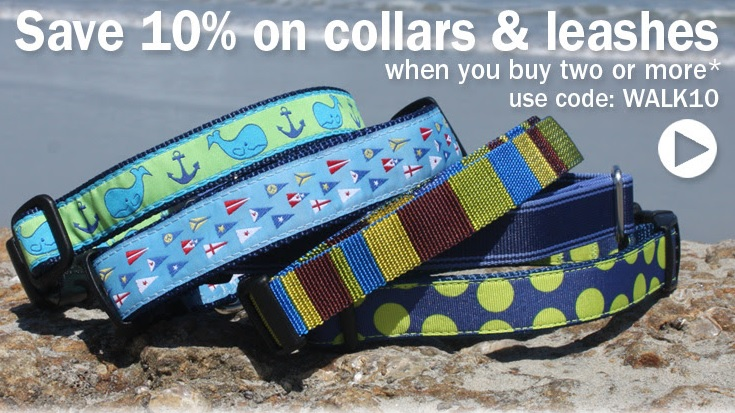 Save on Collars and Leashes