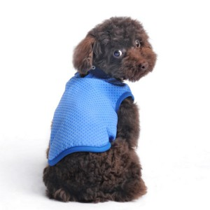 iCool Vest